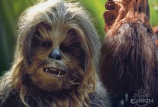 Ist Chewbacca im Schrank gefangen? Sehr lustig!