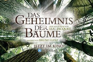 Gewinnspiel: DAS GEHEIMNIS DER BÄUME