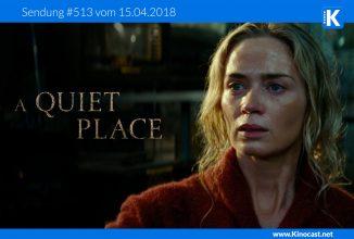 #513:<BR>A Quiet Place